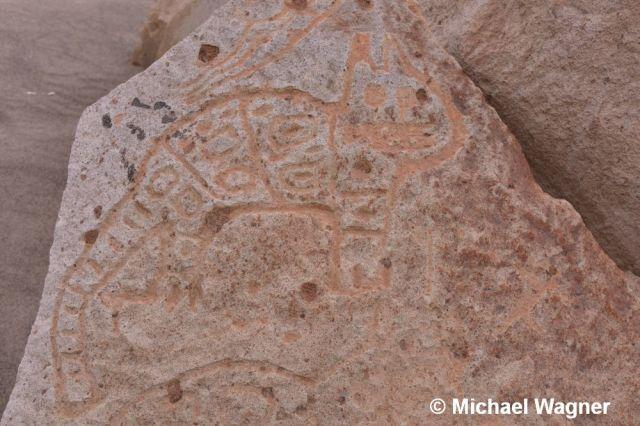Petroglyphe Puma