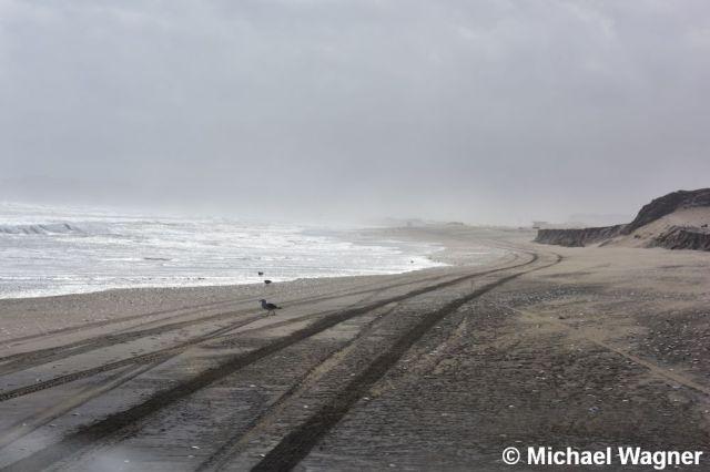 Strand Fahrspuren